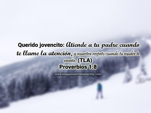 proverbios de hoy