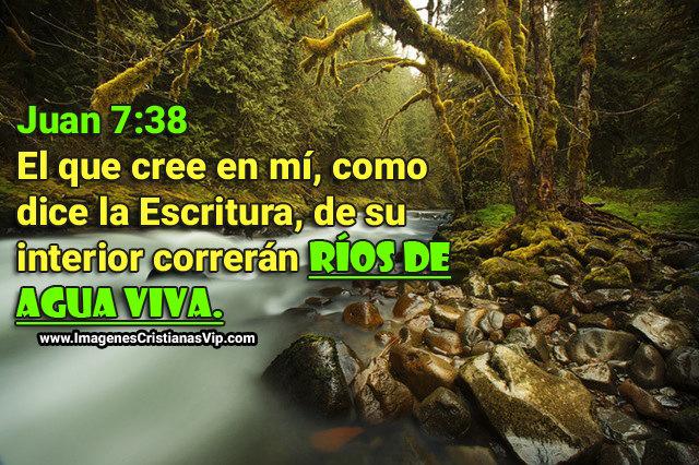 Imágenes Cristianas Correrán Ríos De Agua Viva Imagenes Cristianas