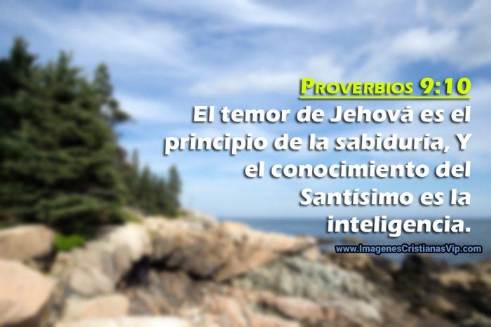imagen-de-proverbios