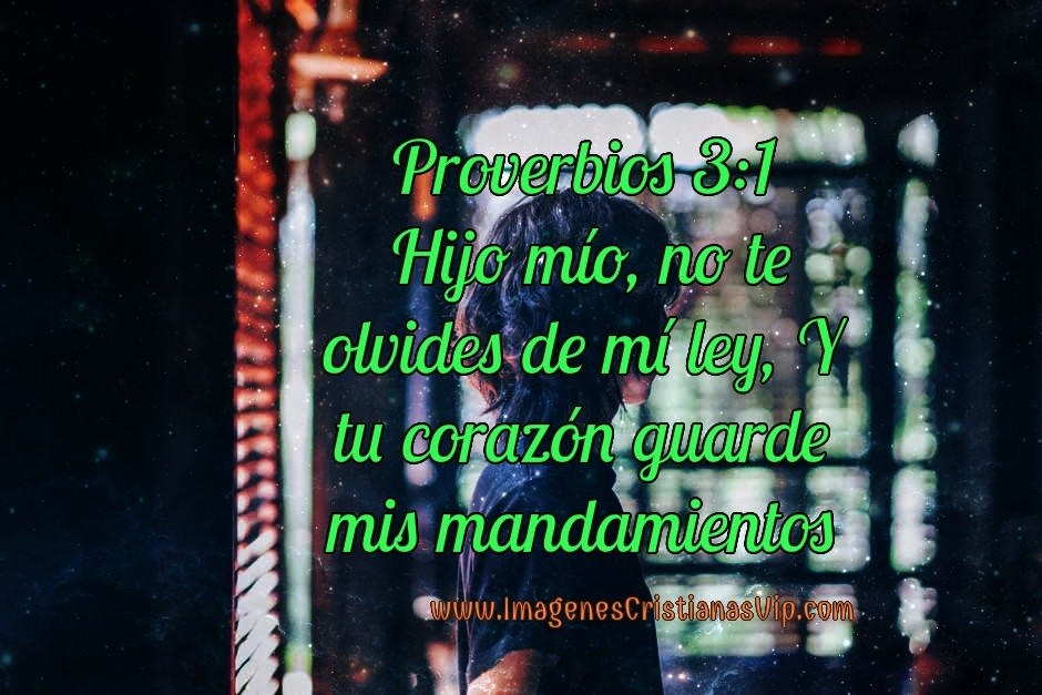 No te olvides de mis mandamientos proverbio de la Biblia